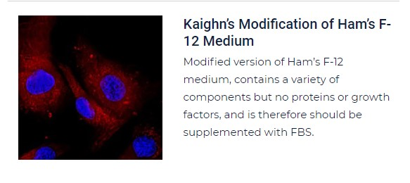 PurMa Tissue Culture Reagent Ham's F-12 Medium