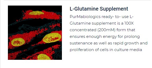PurMa Tissue Culture Reagents L-Glutamine Supplement