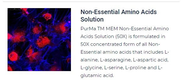 PurMa Tissue Culture Reagents Non Essential Amino Acids