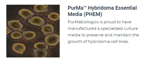 PurMa Tissue Culture Reagents Hybridoma Essential Media