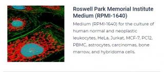 PurMa Tissue Culture Reagents Roswell Park Memorial Institute Medium