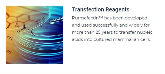 PurMa Tissue Culture Reagents Transfection Reagents